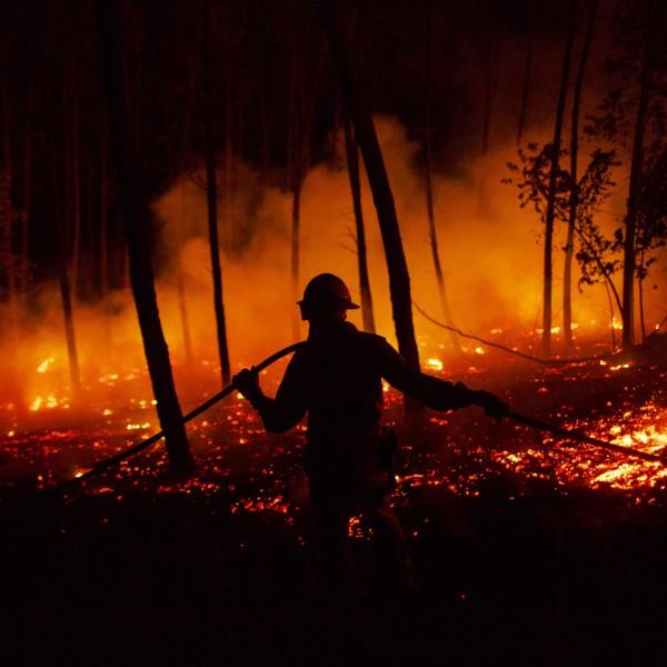 Dozens Dead In Forest Fire In Portugal