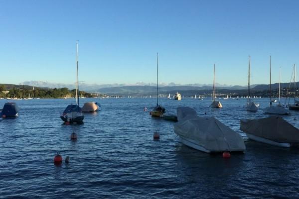 Der wunderschöne Züri See am Mittag